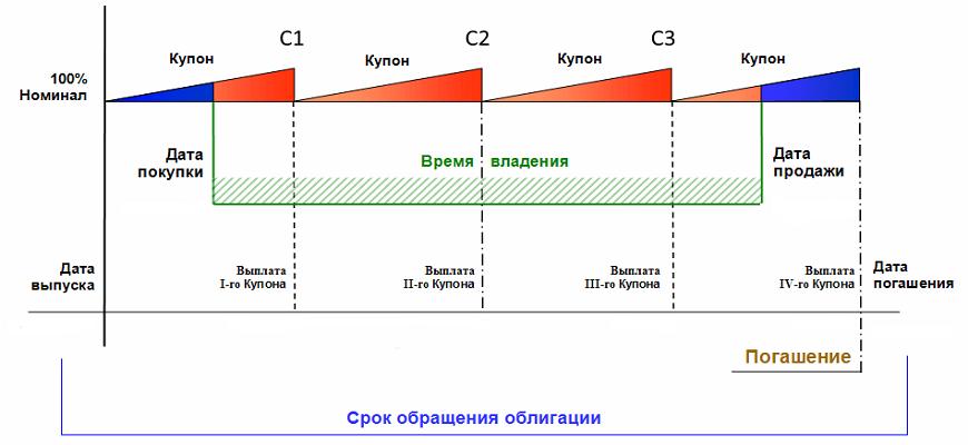 Срок обращения облигации